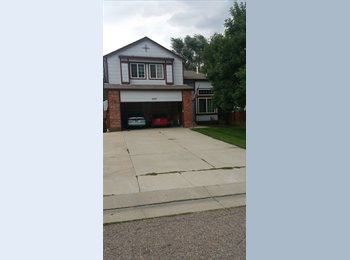 EasyRoommate US - Big house, lots of room, cheap rent.  - Colorado Springs, Colorado Springs - $450 /mo