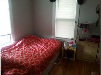 Room available in shared duplex