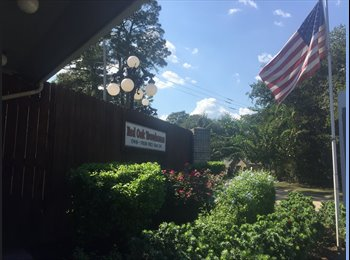 EasyRoommate US - FURNISHED Bed / Private Bath / ALL BILLS PAID  - FM 1960 Area, Houston - $975 /mo
