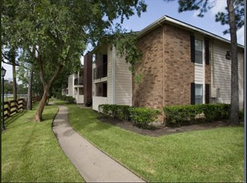 EasyRoommate US - I moved out - 1 bed 1 bath now available for 6 months - Katy, Houston - $700 /mo