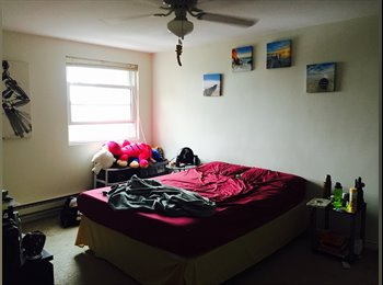 EasyRoommate US - Single room available with attached bath - Female only - Quincy, Other-Massachusetts - $1,030 /mo