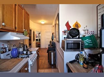 1BR in a 2BR apartment