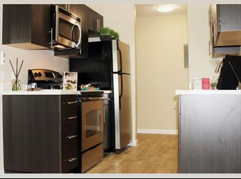 EasyRoommate US - Room in apartment - Santa Clara, San Jose Area - $950 /mo