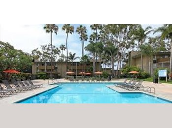 EasyRoommate US - GREAT OPPORTUNITY TO LIVE IN PACIFIC BEACH! - Pacific Beach, San Diego - $550 /mo
