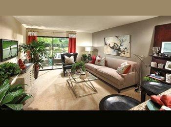 1BR/1BA Master Available at Elan Apartments - $1430/ month ...