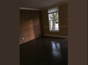Looking for a roommate in Butcher's Hill (close by JHH)