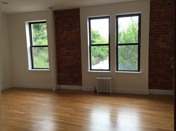 Spacious Bedroom In Sun-Filled, Newly-Renovated Apartment!