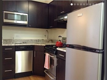 EasyRoommate US - HELLO MTV. WELCOME TO YOUR FUTURE CRIB - Lakeview, Chicago - $1,170 /mo