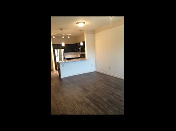 EasyRoommate US - Living room - NW / Medical Center, San Antonio - $350 /mo