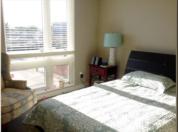 Private Room and Bath in Luxury Apartment near Downtown and...