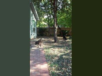 EasyRoommate US - Female roommate wanted! Dog a plus!  - South Austin, Austin - $700 /mo