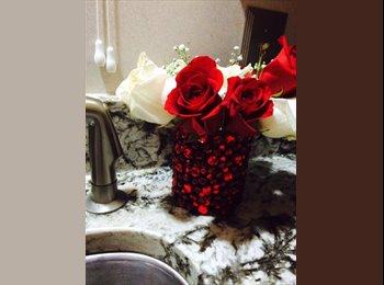 EasyRoommate US - Retired Female Professor seeking Roommate - Addicks Park Ten, Houston - $800 /mo