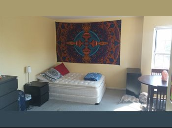 Semi-Furnished Master Bedroom for rent!! Near Carytown/VCU