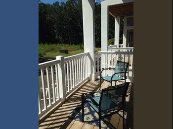 EasyRoommate US - Professional Roommate wanted ASAP - Charleston, Charleston Area - $750 /mo