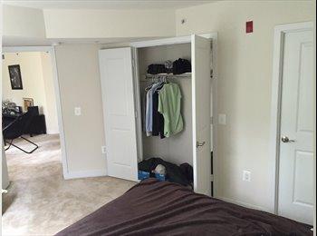 Ballston Private bedroom/bathroom, walking distance to...
