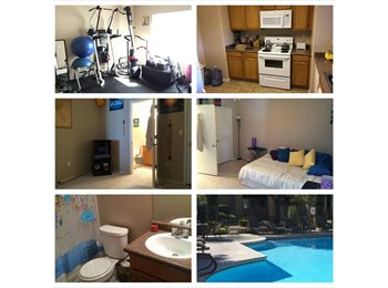 EasyRoommate US - Master Room for Rent - W. Vegas Condo - Spring Valley, Las Vegas - $500 /mo