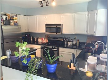 EasyRoommate US - Sunroom for rent-close to old town, Braddock metro station-740 - Alexandria, Alexandria - $740 /mo