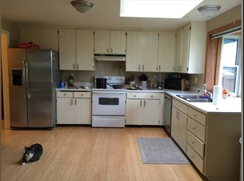 University Place Room for rent in a 3 BR house