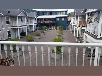 EasyRoommate US - Roommate wanted to share dog friendly apartment - Multnomah, Portland Area - $575 /mo
