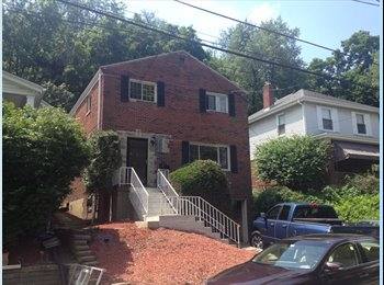 EasyRoommate US - Furnished Home in Pittsburgh for Students/Professionals, Pittsburgh - $500 /mo