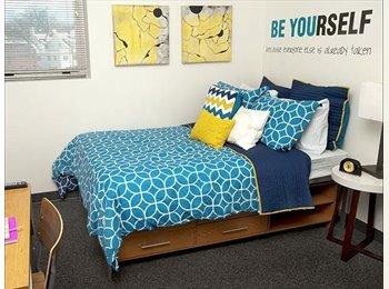 Landmark Apartments:4 bedroom 2 bath full furnished!