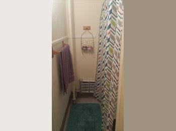 EasyRoommate US - Looking for room mates to fill 2 bedrooms in 4br apt - Worcester, Worcester - $416 /mo
