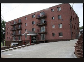EasyRoommate US - Room for rent in midtown - immediately available - Midtown Omaha, Omaha - $550 /mo