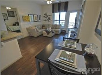EasyRoommate US - Beautiful Apartment at The Connection - Lawrence, Lawrence - $515 /mo
