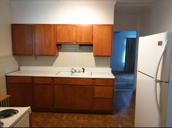 EasyRoommate US - johnson city apartment - Binghamton, Other-New York - $700 /mo