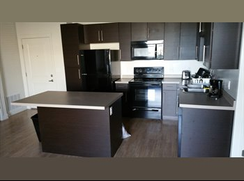 EasyRoommate US - Roomamte Shared new Apartment for rent  - Downtown, Salt Lake City - $700 /mo