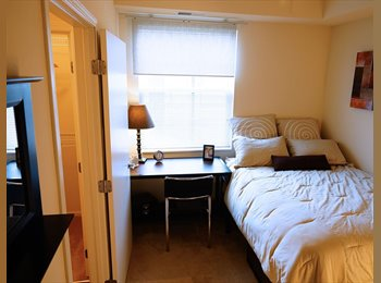 EasyRoommate US - 1 girl needed for a 4bedrooms 2 bathrooms  - St Paul West, Minneapolis / St Paul - $556 /mo