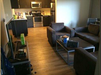 EasyRoommate US - Modern apartment at BLVD63 close to SDSU - El Cajon, San Diego - $700 /mo