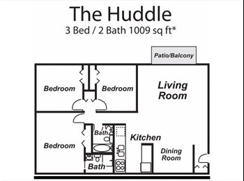 One Room Availbe to Student