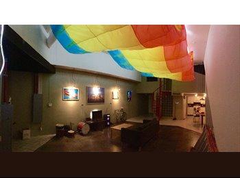 EasyRoommate US - Huge modern loft right next to tech  - Lubbock, Lubbock - $600 /mo