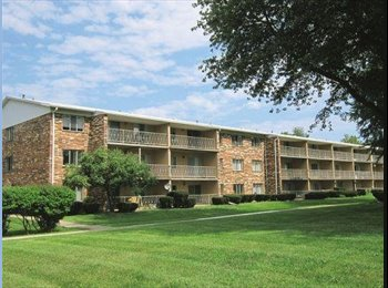 EasyRoommate US - Female Roommate Wanted - Park Avenue, Rochester - $420 /mo