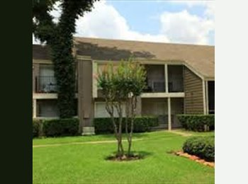 Seeking Sub for Affordable Apartment in Heights Area!...