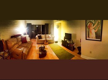 EasyRoommate US - Roommate Needed -- Gorgeous 2-BR Apartment with Private Balcony - Southwest Allegheny, Pittsburgh - $750 /mo