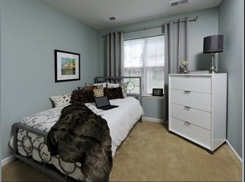 Room available in a a brand-new apartment community