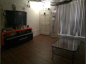 Looking for fun young roommate