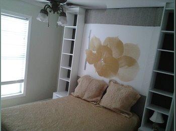 Seeking Female Professional Roommate