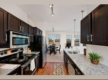 EasyRoommate US - Luxury Apartments: Room Available at Carolina Bay! - Charleston, Charleston Area - $715 /mo