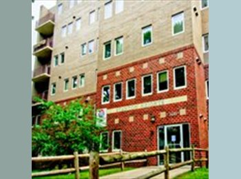 EasyRoommate US - 1 Bedroom Sublet in 3 Bedroom Apartment Close to Campus - Ames, Other-Iowa - $569 /mo