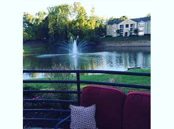 EasyRoommate US - Room for rent at Lakeside just $334  - Athens, Athens - $334 /mo