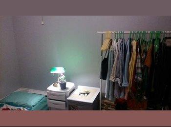 EasyRoommate US - $550 Cozy Temporary Room - Cambridge, Cambridge - $550 /mo