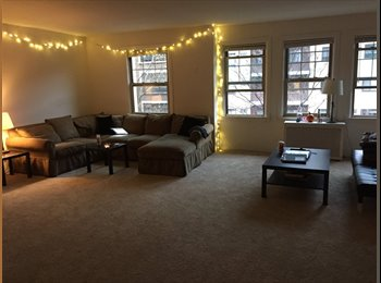 EasyRoommate US - Spacious Lakeview Apartment looking for a student - Lakeview, Chicago - $500 /mo