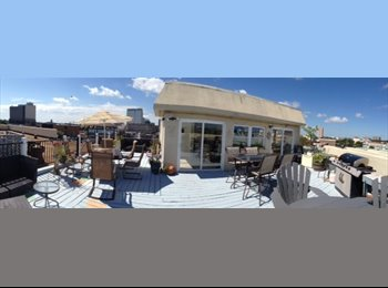 EasyRoommate US - Arts district condo, rooftop deck - Norfolk, Norfolk - $800 /mo