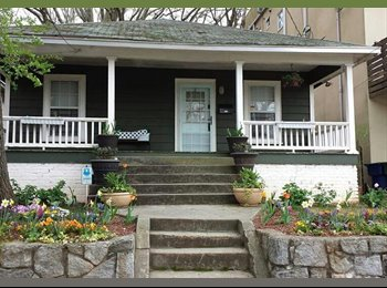 ADORABLE MIDTOWN BUNGALOW - Room for Rent