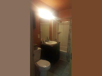 For Rent!!! Studio, 1 Bedroom & 2 Bedrooms!!!