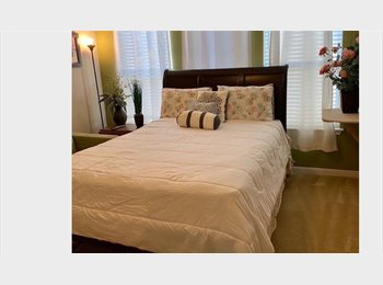 EasyRoommate US - **beautiful house with rooms to rent** - NW San Antonio, San Antonio - $550 /mo