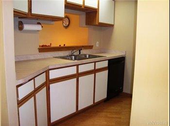 EasyRoommate US - Cheap room available very close to UB - Buffalo, Buffalo - $620 /mo
